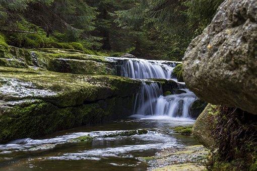 Waterfall, River, Forest, Rocks, Stream, Creek, Falls