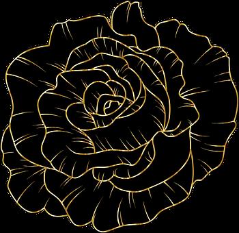 Rose, Flower, Black, Gold, Line Art, Petals, Plant