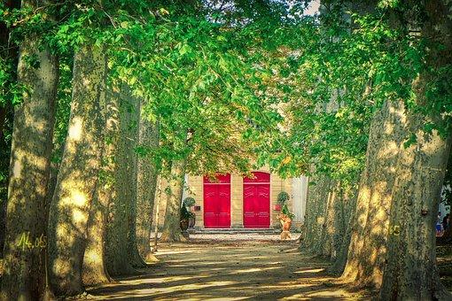 Park, Avenue, Trees, Doors, Red Doors, Building, Path