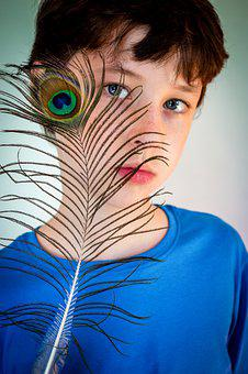 Boy, Peacock Feather, Portrait, Feather, Child, Kid