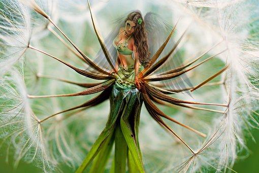 Dandelion, Composing, Woman, Fantasy, Wing, Flower