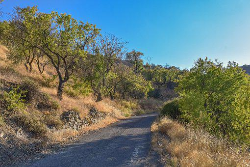 Road, Hill, Trees, Path, Pavement, Landscape, Nature