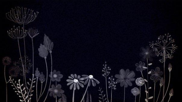 Flowers, Night, Background, Black, Mysterious, Dark
