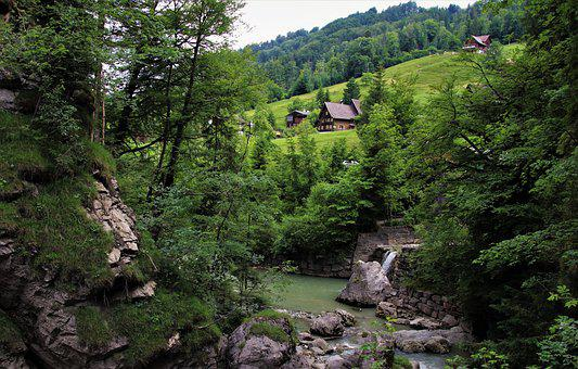 Rocks, The Cabin In The Mountains, Green Summer, Lush