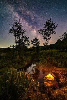 River, Lantern, Night Sky, Stars, Starry, Trees, Nature