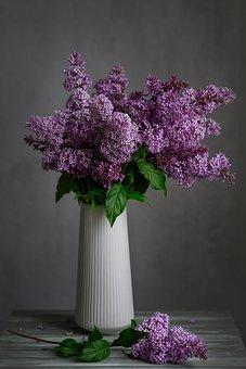 Lilac, Bouquet, Vase, Still Life, Flowers