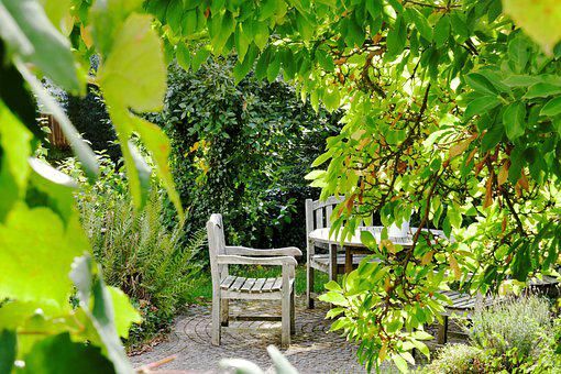 Seating Area, Leaves, Garden Chair, Plant, Nature