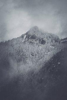 Mountains, Forest, Winter, Nature, Outdoors
