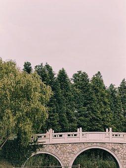 Bridge, Trees, River, Arches, Nature, Park