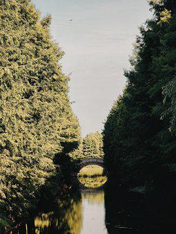 River, Bridge, Trees, Park, Reflection, Water, Arch