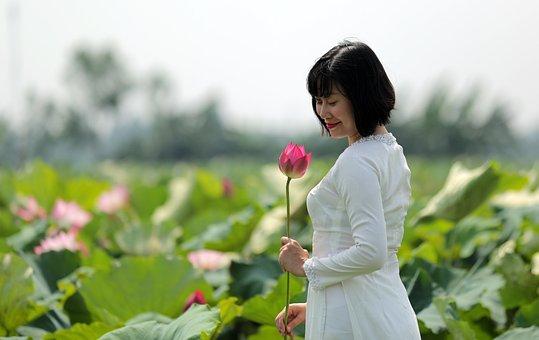 Woman, White Dress, Lotuses, Flowers, Lotus Garden