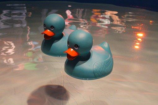 Rubber Ducky, Ducky, Toy, Cute, Bath, Rubber, Fun, Play