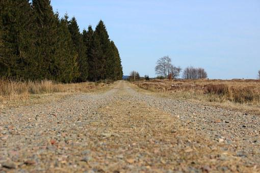 Away, Road, Landscape, Nature, Horizon, Forest, Just