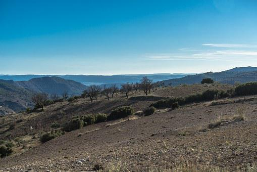 Horizon, Landscape, Plateau, Olive Trees, Sky, Sun