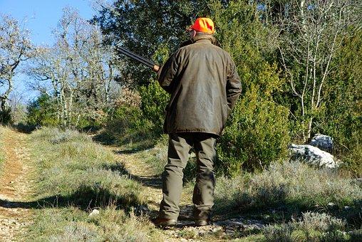 Hunting, Hunter, Gun, Maquis, Scrubland