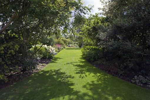 Rhs Hyde Hall, Garden, Long Avenue, Trees, Lawn