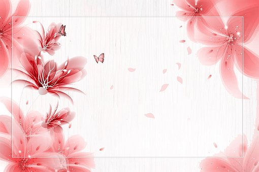 Flower, Butterfly, Background, Petals, Blossom, Bloom