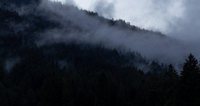 Mountain, Forest, Clouds, Dark, Fog, Mist, Nature