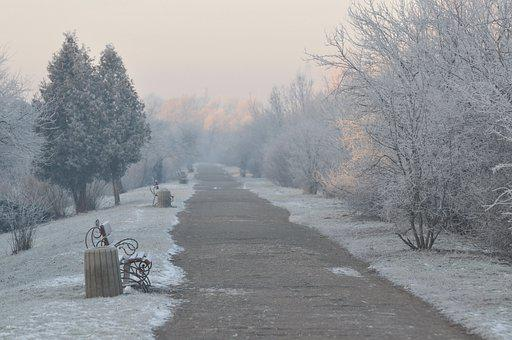 Path, Road, Trail, Trees, Forest, Cold, Winter, Morning