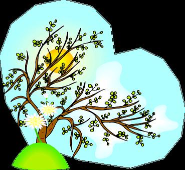 Tree, Branches, Flowers, Sunset, Nature, Arbre, Saison