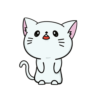 Cat, Pet, Animal, Kitten, Eyes, Kitty, Cut Out, Love