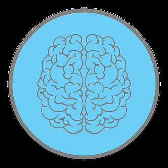 Brain, Mind, Psychology, Think, Idea, Knowledge