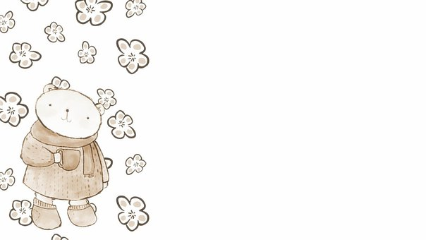 Bear, Flowers, Background, Brown, White, Hot Drink