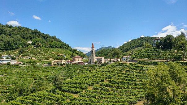 Vineyard, Hills, Village, Italy, Grapevines, Vines