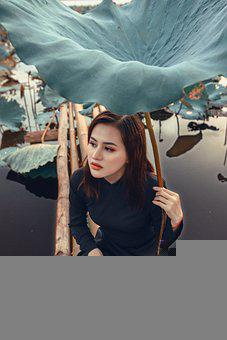 Woman, Model, Portrait, Black Dress, Pose, Lotus Leaf