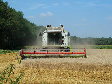 Combine Harvester, Harvest, Farm, Wheat, Cereals