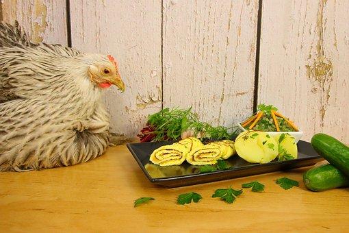 Chicken, Omelette, Food, Eat, Scrambled Eggs, Healthy