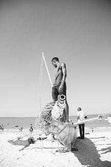 Fisherman, Boat, Beach, Tanzania, Black And White
