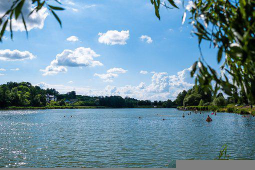 Lake, Trees, Forest, Water, Sky, River, Summer, Sea