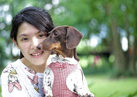 Girl And Dog, Girl, Dog, Cute, Cuddle, Dog Clothes, Pet