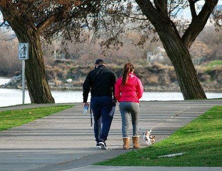 Walking Dog, Walk, Dog Walking, Pet, Woman, Female