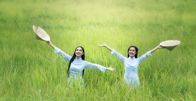 Woman, Rice, Green, Countryside, The Country, Freedom