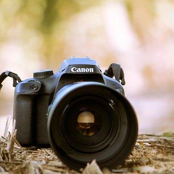 Camera, Photography, Canon, Digital Camera, Lens, Dslr