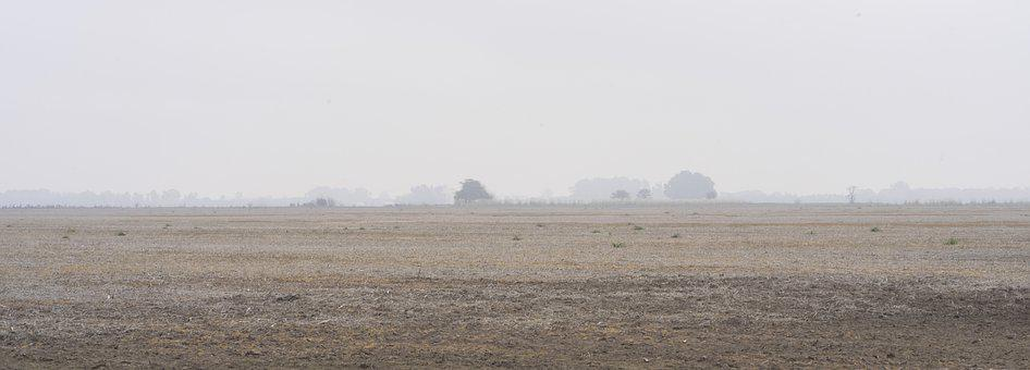 Field, Earth, Campestre, Rock, Fog, Mist, Ice, Cold