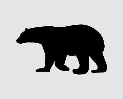 Black, Bear, Panda, Animal, Nature, Sad, Paw, Mammal