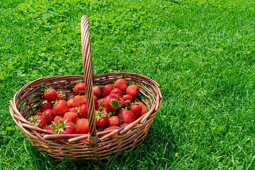 Strawberries, Basket, Fruits, Berries