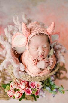 Newborn, Baby, Photoshoot, Sleeping, Costume, Basket