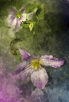 Flower, Plant, Creeper, Nature, Summer, Garden, Violet