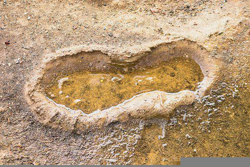 Footprint, Shoe Print, Mud, Trace, Wet, Water, Puddle