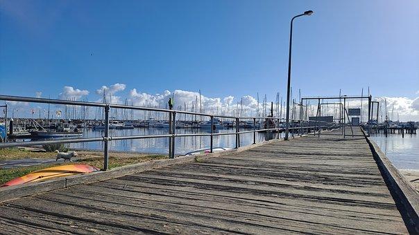 Dog, Beach, Sky, Clouds, Blue Sky, Sunny Day, Yachts