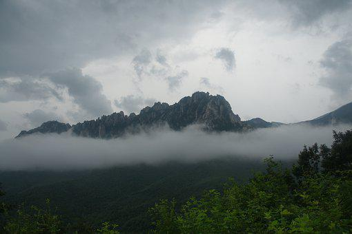 Mountain, Fog, Forest, Rainy, Clouds, Outdoors, Nature
