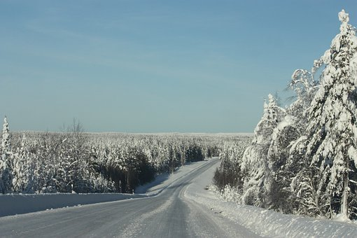 Snow, Nature, Landscape, Travel, Sky, Scenic, Forest