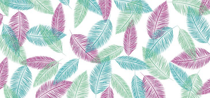 Feathers, Creative, Background, Pattern, Texture