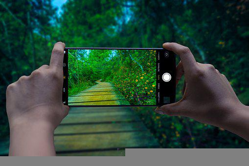 Smartphone, Camera, Landscape, Nature, Wooden Trail