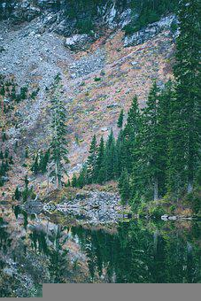 Lake, Mountain, Nature, Forest, Reflection, Water