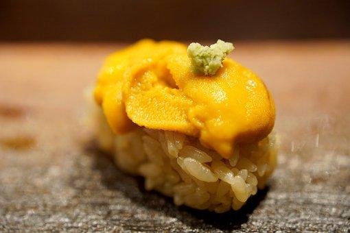 Urchin, Sushi, Japan Food, Dish, Cuisine, Seafood